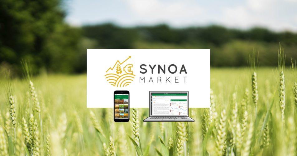 Synoa Market